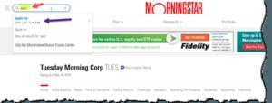 Main Screen of Morningstar to Enter Apple Stock